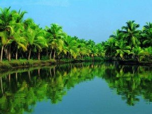 Alleppey tur packages