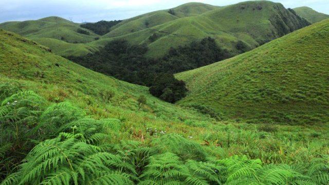 The Indian Journeys Kerala-tour-destination Kerala-tour-destination