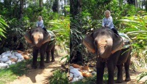 pamela riding an elephantt